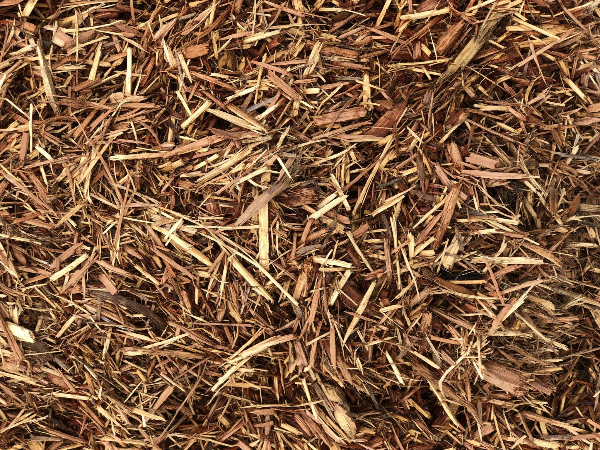 Cedar For Sale Online In Store Asheville Mulch Yard