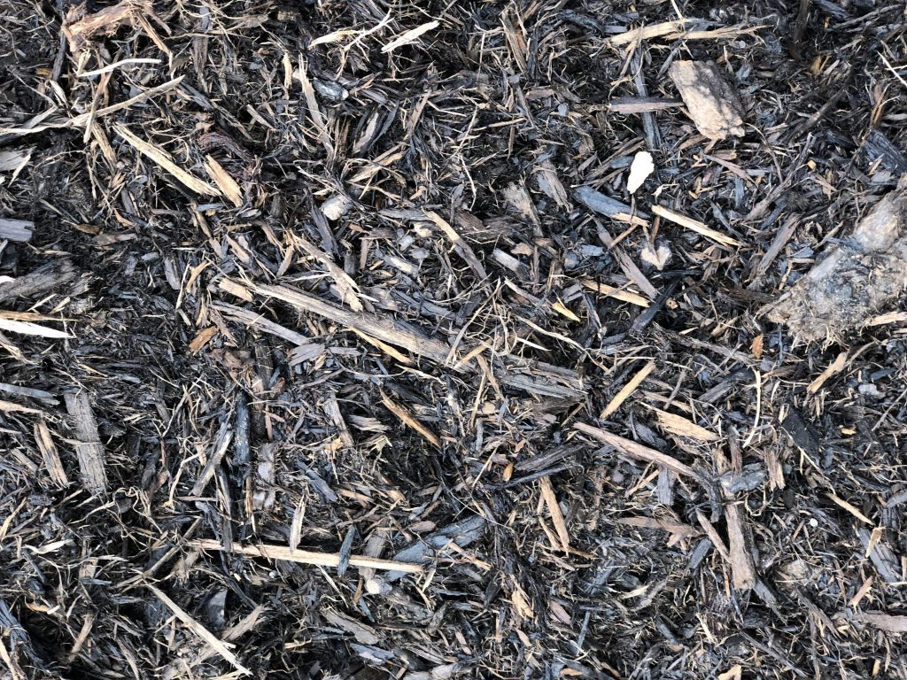General Purpose Pine Mulch available in-store and online for pickup or delivery at Asheville Mulch in North Carolina